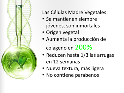 Tra. Células Madres vegetales